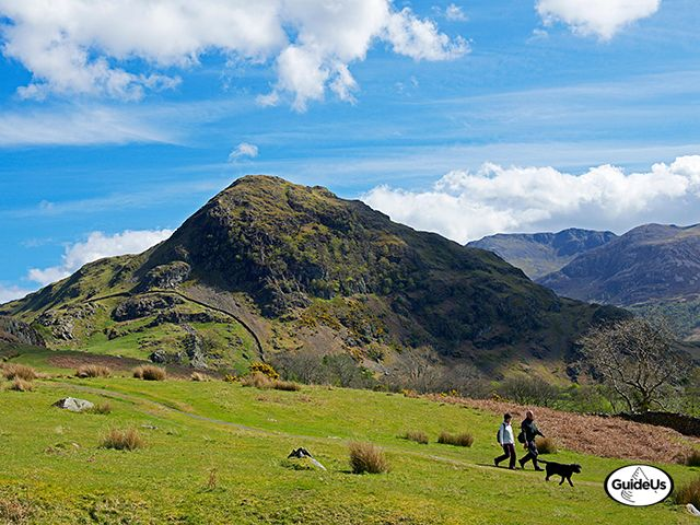 walkers with dog rannerdale